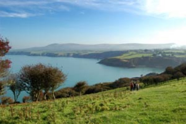 landscape and lake
